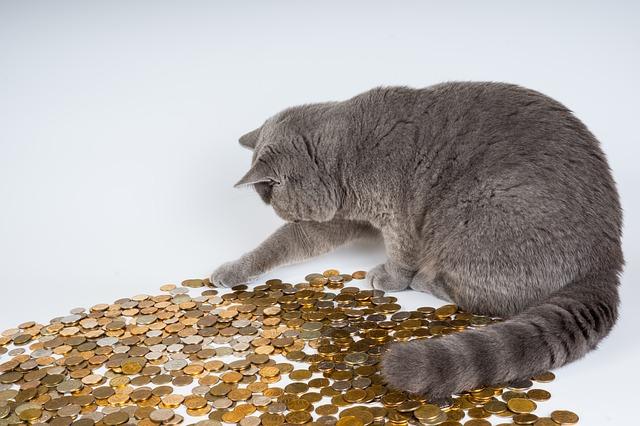 お金に対する潜在意識を変える